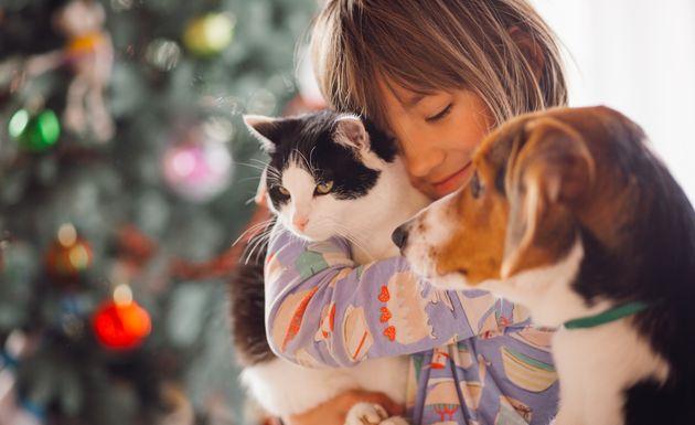 каких животных должен знать ребенок в возрасте 1 – 1,5 года